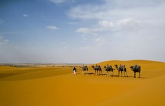 MERZOUGA IN MOROCCO-4 (photojordi) Tags: blue light paisajes luz sport canon de photography eos photo amazing sand foto y offroad 4x4 photos dunes quad lo best adventure arena ixus morocco fotos maroc yamaha atv suzuki atardeceres fotografia blanche buggy incredible marruecos plage ouarzazate trial zagora buggies marroc kawasaki dunas mejor aventura polaris mejores bombardier merzouga bests erfoud increible espectacular strem 980 newvision rzr rzrs wwwphotojordicom photojordicom photojordi peregrino27newvision