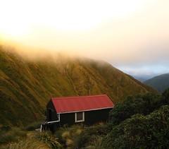 Trip: Cattle Ridge, Dundas and Herepai | Windy Hilltops