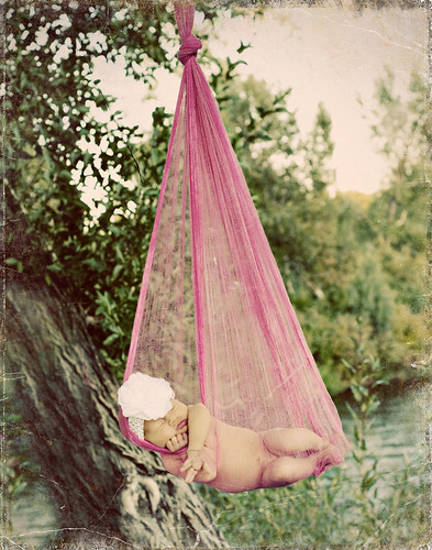 Sarah Egan-stork 386 copy-vint