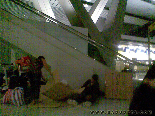 cardboards distributed at the airport