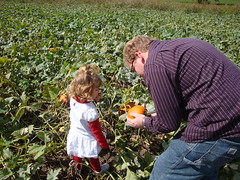 Dad Showing Lilli A Pumpkin