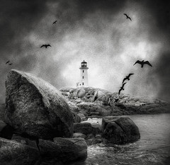 A Beacon in the Dark... (The Nature of Things) Tags: bw seagulls lighthouse canada texture rocks novascotia d70s scotia peggyscove cs3 photomatix hdr3ex vertorama niksfilters obramaestra