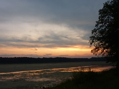 Sunset from bank 5 (sfgamchick) Tags: statepark sunset river mississippiriver greatriverroad illinoisstatepark mississippipalisades mississippipalisadesstatepark