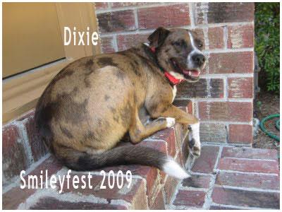 50-Dixie---3