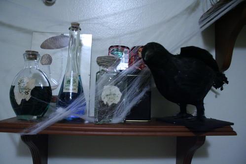 Raven Shelf