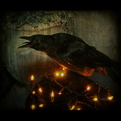 "Quoth the raven, ""Nevermore."" (anniedaisybaby) Tags: black bird halloween urn night lights feathers textures onceuponatime midnight raven dreamcatcher dreamscapes edgarallanpoe theraven nevermore orangelights allhallowseve l"