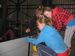 Teenagers from the Tuesday group carefully applying the finishing touches