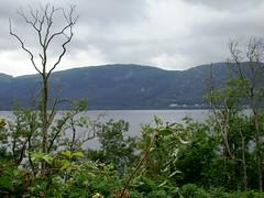 Loch Ness (1) (astroJR) Tags: uk greatbritain trees lake landscape scotland unitedkingdom lac arbres gb loch paysage lochness ness ronces ecosse vgtation royaumeuni grandebretagne scotlandslandscapes