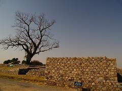 P1019685 (dead end doll) Tags: pakistan ruins taxila sirkap