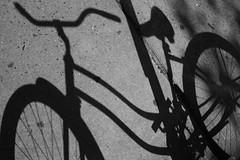 Bicycle Series