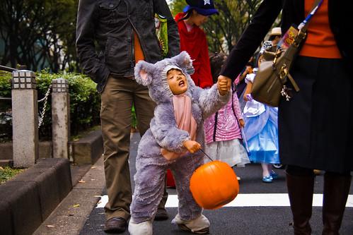 """Tired Koalo Bear """"No more walking"""", Omotesando Avenue Halloween Parade by Buz Carter."""