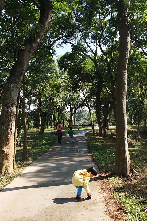 嘉義民雄森林公園005