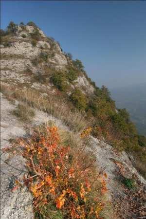 La vetta di Monte Mauro, foto di Flavio Bianchedi
