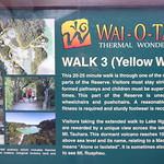 RotoruaWai-O-Tapu038 thumbnail
