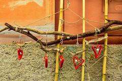 hearts hanging  ... (miriam ulivi) Tags: miriamulivi nikond3200 liguria camogli sanvalentino decorazione valentine'sday