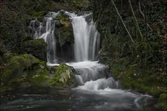 Cascada (Jose Cantorna) Tags: water waterfall agua cascada seda bosque paisaje nature landscape nikon d610