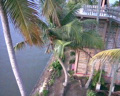 Image070 (alleppey hotels) Tags: where stay alleppey