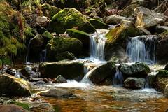 Kesselbach (rab36) Tags: longexposure nature water germany waterfall hiking bach schwarzwald blackforest hdr wandern langebelichtung