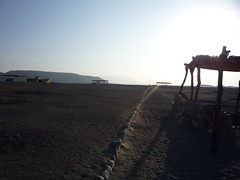 P1000649 (aureliesauthier) Tags: peru cementerio nazca momias prou momies chauchillas