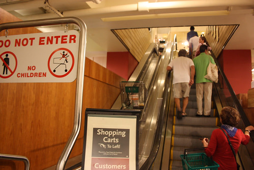 An escalator for shopping carts