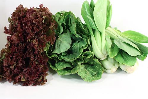 lettuce bok choy