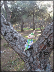 In the forest (SoniaenDublin2009) Tags: flowers pets cute bunny gallo fox kawaii lovely ai gallina treboles fairland dollzone pukipuki pukisugar dollzonebunny dollzonefox chickepukipuki treespukipuki