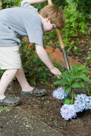 gardening_Jun162009_0004web