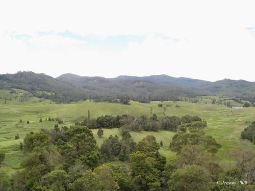 Mannavanur grassland