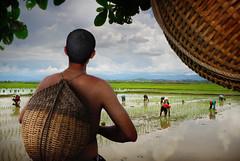 Aparri-23 (highlights.photo) Tags: travel sunset people seascape nature landscape boat fisherman asia rice philippines farming culture filipino farmer filipina boatman filipiniana luzon aparri travelphotographs ricefarming
