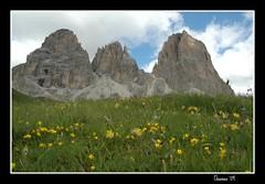 Veduta del Sassopiatto e Sassolungo (mciabini) Tags: italy nature trekking walking nikon d70 natura nordic montagna trentino dolomiti sassopiatto valdifassa sassolungo forcellasassolungo
