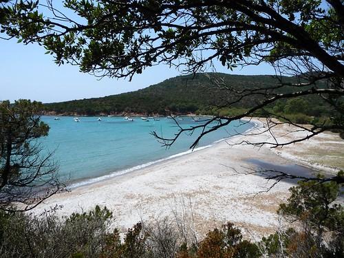 Cala di Furnellu (ou de Caniscione) : la plage et l'embouchure du Spartanu