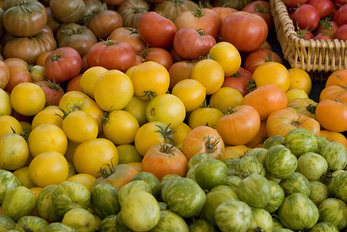 Red, yellow, orange, and green tomatoes