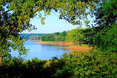 Naturally Framed (NateFischPix) Tags: statepark park trees summer lake water colors forest landscape nathan framed vivid iowa shore iowacity fischer naturallyframed platinumheartaward natefischpix