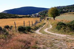 Une jolie photo de randonnée sur le Mont Lozère, village de l'Hôpital, bonne idée pour vos prochaines vacances weekend ?