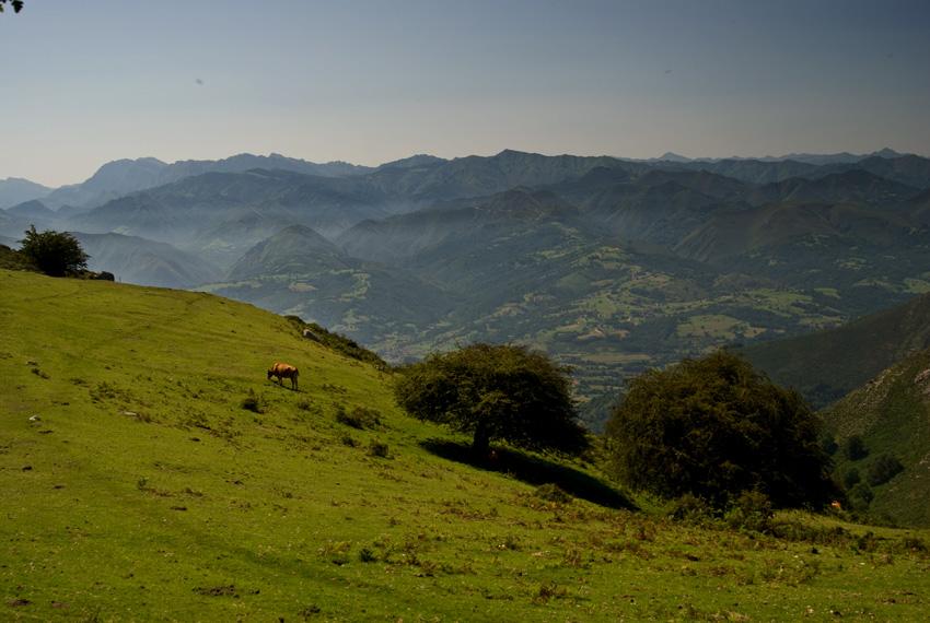 Cordillera desde el Sueve