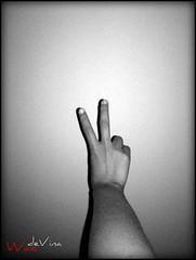 Peace (V)