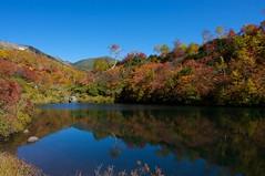 式部沼から緑岳を望む