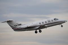 CS-DMP - Netjets Europe - Beech Hawker 400XP - Luton - 090130 - Steven Gray - IMG_7695