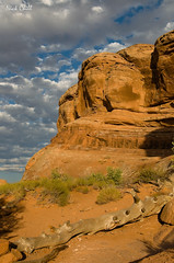 Where Stone Touches Sky (Nick Chill Photography) Tags: travel sky nature clouds landscape photography utah nationalpark desert image stock scenic archesnationalpark dx nickchill