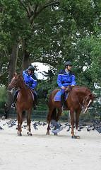 Jzdn policie (therezablonde) Tags: paris pa