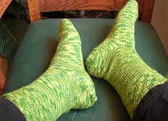 Discovery socks with basket weave cuff.