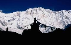 ABC-Trek, Annapurna I with pagoda (blauepics) Tags: schnee nepal camp snow mountains nature trekking landscape rocks asia earth natur berge himalaya circuit landschaft base annapurna felsen pagode machapuchre earthasia visipix