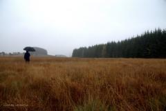365........24/24 (Nicolas Valentin) Tags: man nature rain umbrella landscape scotland scenery nicolasvalentin lesolitaire