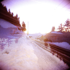 --- (medejavecu) Tags: trees light sunset sunlight snow 120 6x6 film analog train germany switzerland licht holga sonnenuntergang swiss negative analogue sonne toycam rigi mittelformat