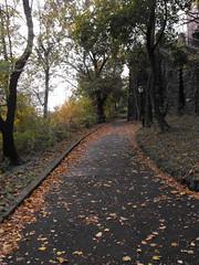 DSCF2049 (Dee R.) Tags: park photo skills morningside practicing my