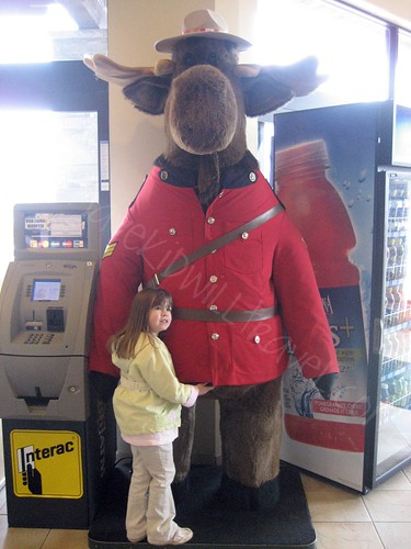 Who Doesn't Love a Large Stuffed Moose Dressed as a Mountie?  Souvenir City, Niagara Falls, Canada