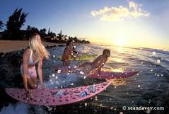 surfer girls getting into the surf on the north shore, Oahu (Sean Davey Photography) Tags: usa color horizontal hawaii mr oahu northshore surfers surfart surfergirls sunsetsurf surffun beachscenery surffriends happysurf modelreleased seandavey beachphotograph pipelinenorthshore surflifestyle surfpeople lanedavey surfnorthshore surfersphotographs imagessurf surfimage gypsyruss sunsetsurfgirls surfphotosart