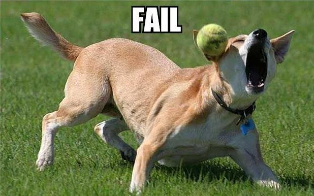 Don't Fail Like This Dog at Planning