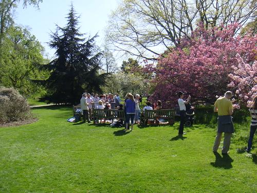 En pleno picnic
