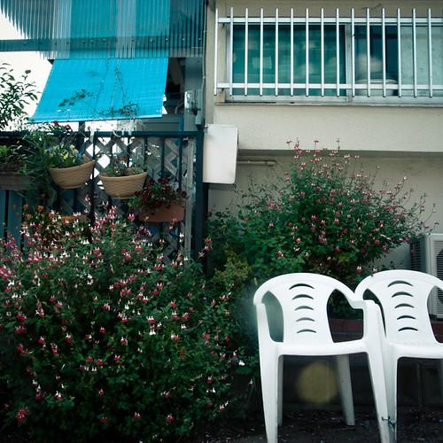 Front Side Sitting Garden